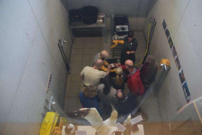 EUROWA Veterinary Specialist Training Held In Belgium