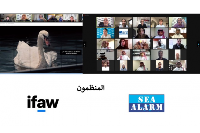 Sea Alarm Teams Up With IFAW To Deliver Online Oiled Wildlife Response Training Events