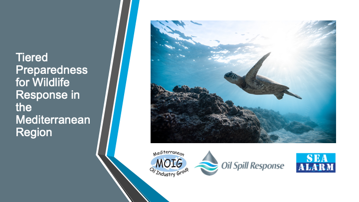 Wildlife Response, With A Focus On The Mediterranean, Presented To MOIG Members